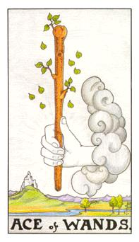 The Ace of Wands tarot card from the Universal Waite deck