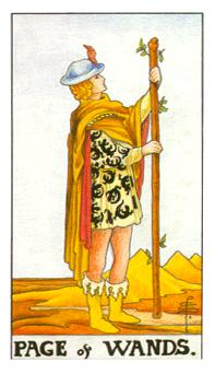 The page of wands tarot card from the Universal Waite deck